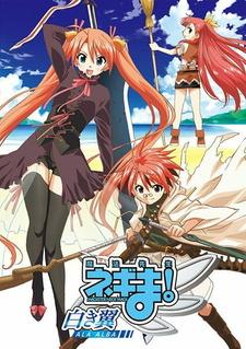 Mahou Sensei Negima!: Shiroki Tsubasa Ala Alba