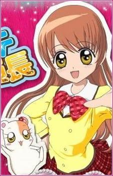 Gokujou!! Mecha Mote Iinchou Second Collection