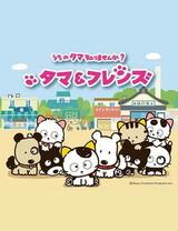 Tama & Friends: Uchi no Tama Shirimasen ka?
