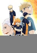 Haikyuu!! (Shin Series)