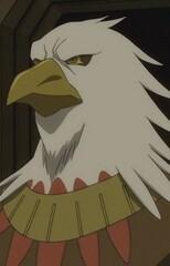 Hawk Condor