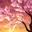 Leo (Jung Taek Woon)